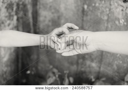 The Hands Of A Beggar Hungry Boy Hold And Break A Piece Of Bread