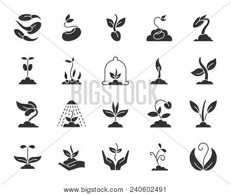 Sprout Silhouette Icons Set. Isolated Monochrome Web Sign Kit Of Seeds. Sprout Pictogram Collection