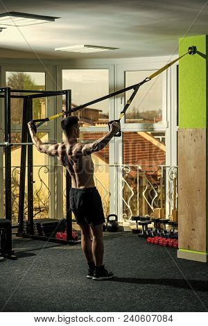 Man With Nude Torso, And Muscular Back In Gym Enjoy Training, Trx. Sport And Gym Concept. Man With T