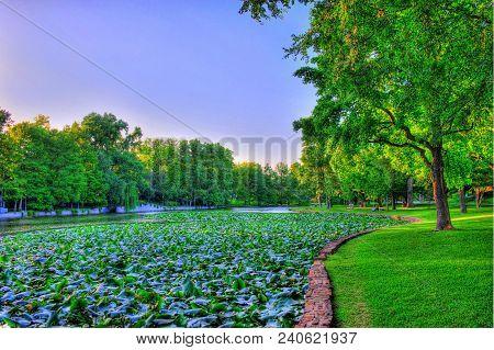 Hdr Photography At Lakeside Park Dallas, Texas