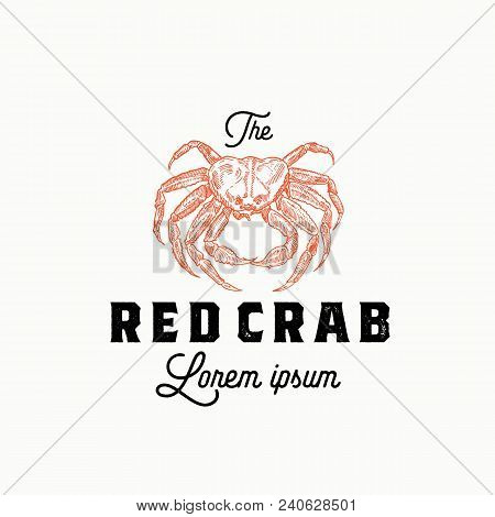 The Red Crab Abstract Vector Sign, Symbol Or Logo Template. Hand Drawn Crab Sillhouette With Retro T