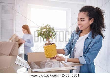 Element Of Decor. Charming Young Girl Retrieving A Plant From The Box And Smiling While Roommate Unp