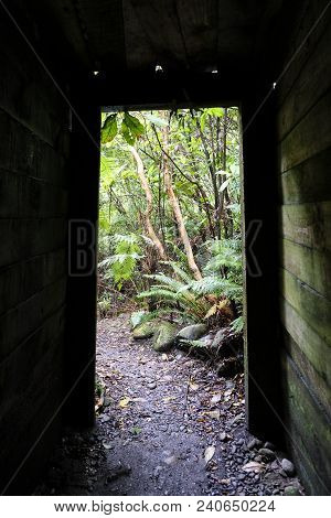 A Disused Gold Mine Entrance At A Heritage Site, South Island, New Zealand