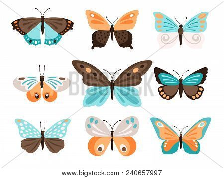 Colorful Butterflies. Vector Color Butterfly Collection Isolated On White With Blue Orange Wings