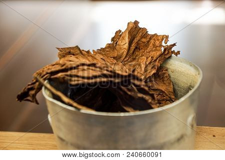 Overhead Shot Of Finest Tobacco As A Background .