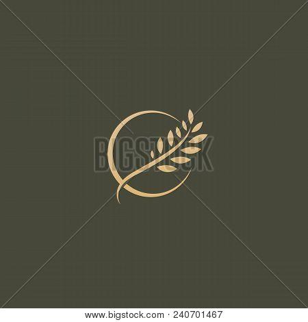 Illustration Design Of Elegant, Premium And Royal Logotype Leaf On A Dark Background. Vector Icon Of