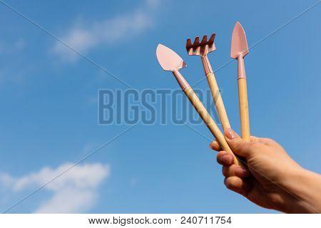 Gardening Tools In Miniature. Rake, Shoulder Blades. Hand Holds Garden Tools Against The Sky. Garden