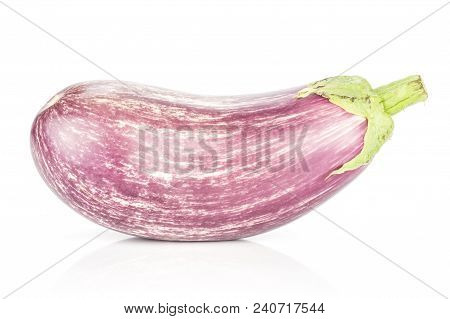 One Striped Purple Eggplant Isolated On White Background