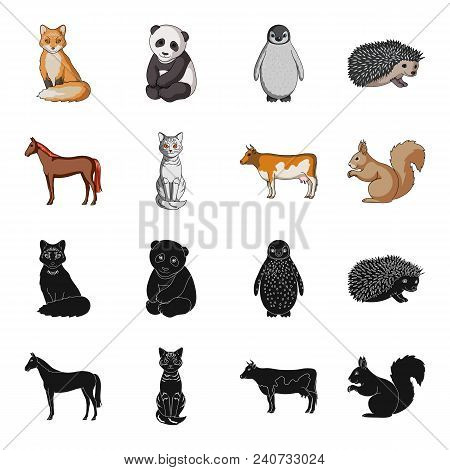 Horse, Cow, Cat, Squirrel And Other Kinds Of Animals.animals Set Collection Icons In Black, Cartoon