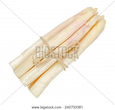 White Asparagus Shoots Bundle, Also Sparrow Grass. Blanched Cultivated Asparagus Officinalis. Spring