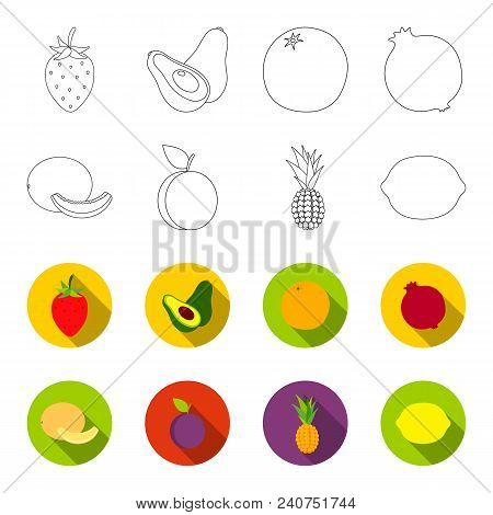 Melon, Plum, Pineapple, Lemon.fruits Set Collection Icons In Outline, Flat Style Vector Symbol Stock
