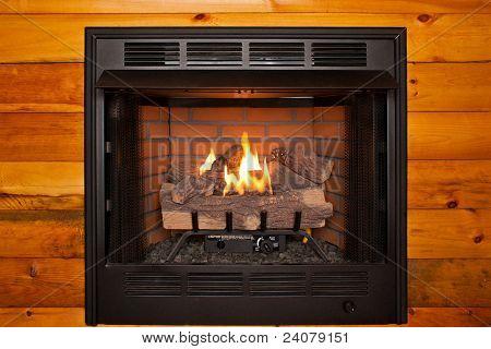 Fireplace Whole