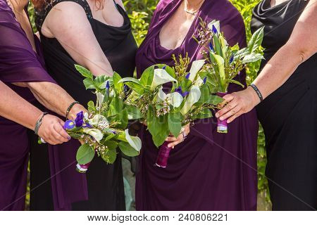 Bridesmaids in purple and black holding bouquets, 5 women, no faces