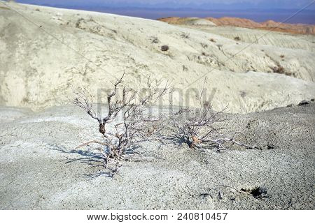 White Desert Landscape