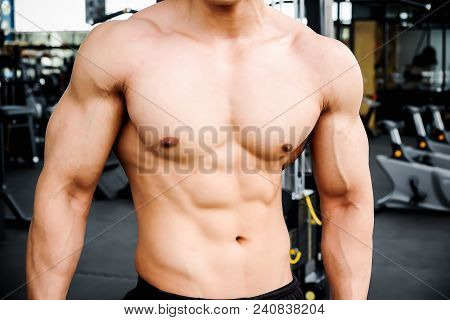 Muscular Bodybuilder Man Showing Muscular Body And Sixpack Abs At A Gym