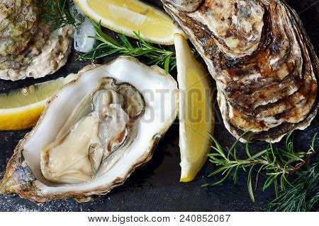 Mediterranean oysters on a dark background with ice and lemon slices. Sea delicacy. poster