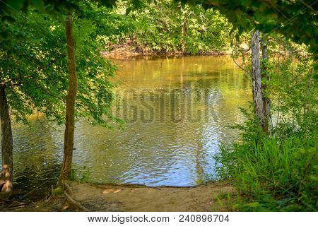 A opening in the trees at a shady green shore of the Haw River in North Carolina.