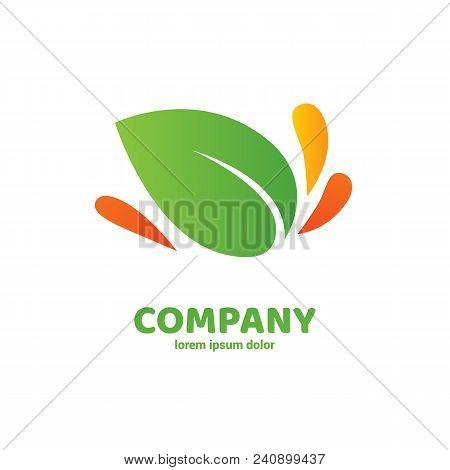 Illustration Design Of Logotype Business Eco Symbol. Vector Leaf Web Icon.