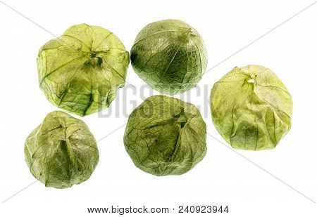 The Tomatillo Or Mexican Husk Tomato, Physalis Philadelphica, Originated In Mexico And Are A Staple