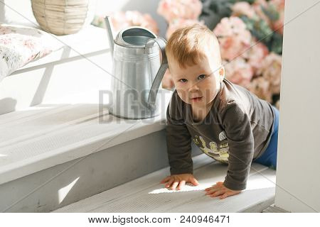 Baby Boy Climbing Up Stairs At Studio. Flowers On Background.