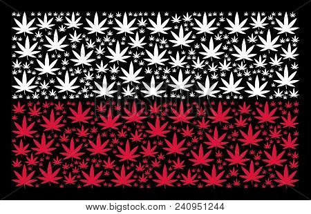 Polish Flag Pattern Created Of Cannabis Elements. Flat Vector Cannabis Icons Are United Into Concept