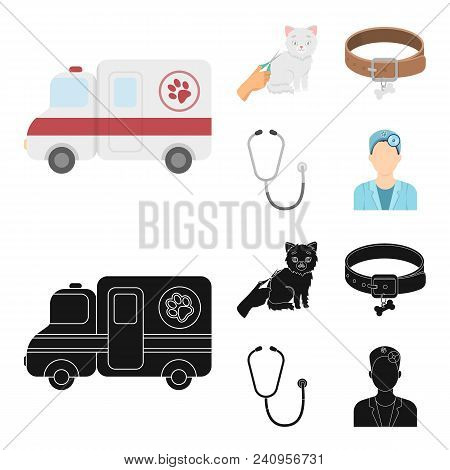 Collar, Bone, Cat, Haircut .vet Clinic Set Collection Icons In Cartoon, Black Style Vector Symbol St