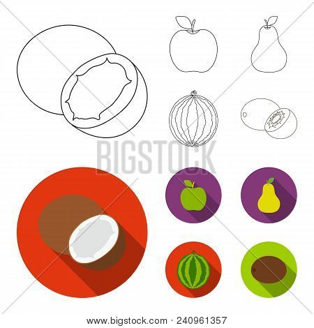 Coconut, Apple, Pear, Watermelon.fruits Set Collection Icons In Outline, Flat Style Vector Symbol St