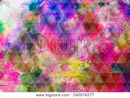 Colorful, Dotted Feathers Background, With Backlit And A Triangular Grid Overlay