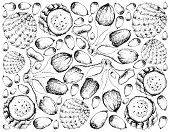 Tropical Fruits, Illustration Wall-paper Background of Hand Drawn Sketch Copao Cactus or Eulychnia Breviflora and Buah Dabai, Kembayau or Canarium Odontophyllum Fruits. poster