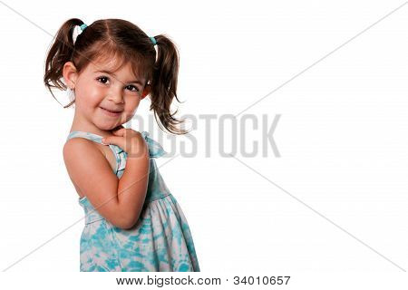 Cute Toddler Girl With Pigtails