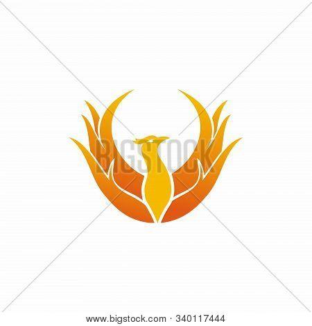 Luxury Phoenix Logo Concept, Phoenix Bird Logo Design, Phoenix Vector Logo, Phoenix E-sport Logo, Cr