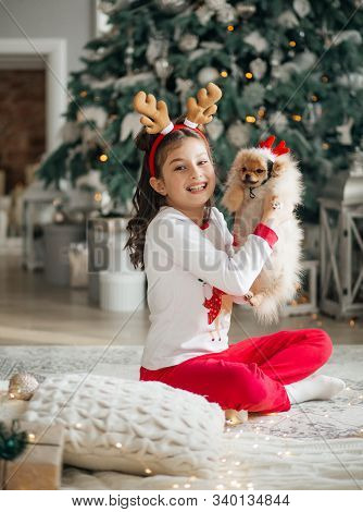 Stock Photo -  Happy Girl With Dog In Christmas Decorations
