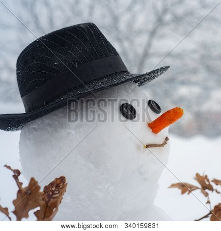 Cute Snowman At A Snowy Village. Snowman In A Scarf And Hat. Snowman On The Background Of Stars And