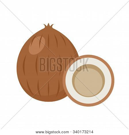 Coco On A White Background Isolated. Vector Illustration