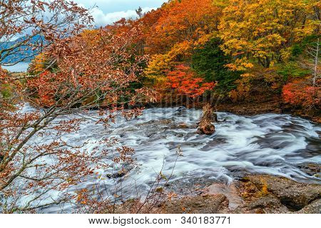 Natural View Of Yukawa River Flow Over Rocks In The Forest Of Colorful Foliage Of Autumn Season To T