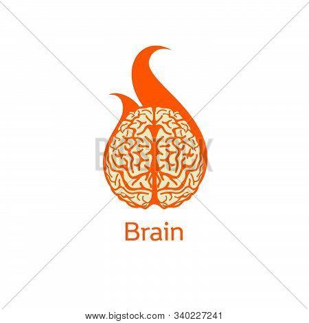 Isolated Colorful Vector Brains. Medical Logo.scientifical Logo. Orange Neurobiology Emblem. Intelli