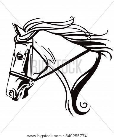 Decorative Monochrome Contour Portrait Of Beautiful Ornamental Racehorse In Bridle Looking In Profil