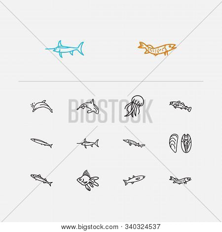 Fish Icons Set. Saury And Fish Icons With Cod Fish, Atlantic Bottlenose Dolphin And Pike Fish. Set O