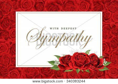 Condolences Sympathy Card Or Strict Style Postcard Vector Template