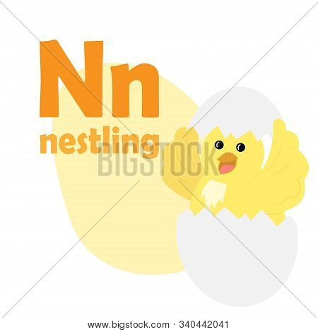 Abc Alphabet Illustration. Vector Cute Kids Animal Alphabet. Letter N. Cute Cartoon Nestling.