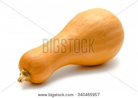 A Pumpkin Isolated On A White Background
