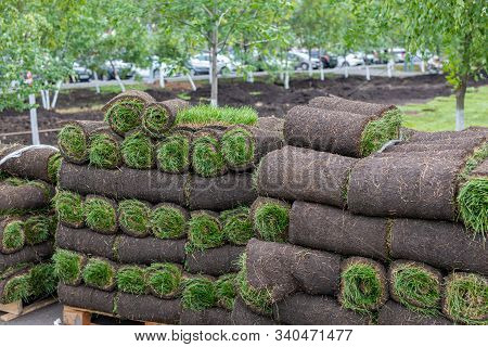 Pieces Of Sod Covering Dirt To Make Lawn. Stack Of Turf Grass Rolls For Landscaping
