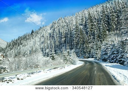 Picturesque Winter Landscape With Mountain Road And Snowy Pine Trees. Carpathian Mountains.