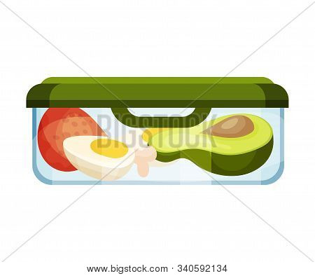 Different Food Stored In Hermetic Container Vector Illustration