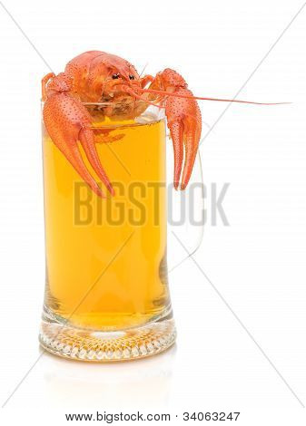 cancer and a full glass of light beer on white background close-up poster