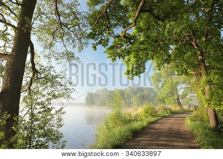 Oak trees lake water spring sun country Nature road Nature background Nature landscape branch twig Nature background spring tree sunrise Nature background Nature background green leaves foliage Nature background travel Nature background Nature background.