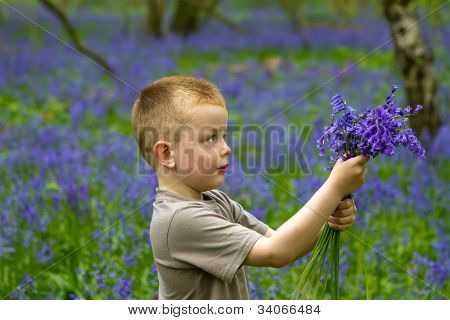 Boys Playing In The Bluebell Woods