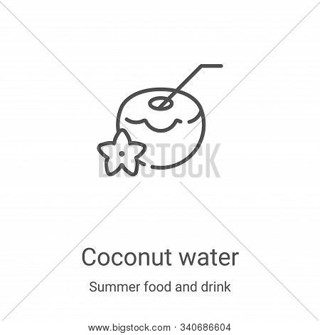 coconut water icon isolated on white background from summer food and drink collection. coconut water