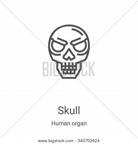 skull icon isolated on white background from human organ collection. skull icon trendy and modern sk