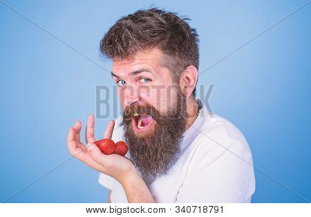 Want To Try My Berry Hipster Bearded Holds Strawberries On Palm, Close Up. Man Cheerful Gonna Eat Ri